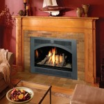 Lopi 864 High Output gas Fireplace